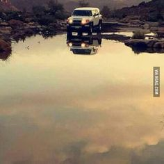 Apparently the photographer waited 62 days to take this shot. Its beautiful. Turn it upside down and see why.