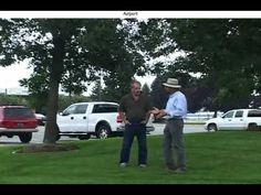 Successful Emerald Ash Borer Treatment of Ash trees at Michigan Airport!