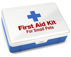 How to Set Up a First Aid Kit for Your Small Pet - Small Pets Pet Care Corner - PetSolutions