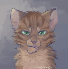 EDIT : I just realized the title was in the wrong order tf i compare the faces of tigerstar, hawkfrost and brambleclaw i usually make all of my cats look the same, but this was a fun exercise to te...