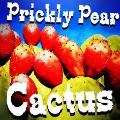 Prickly Pear Cactus  http://www.ecigwizard.com/e-liquid/wizmix/prickly-pear-cactus.html