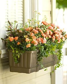 "23"" Self-Watering Windowbox  $29.95  I have this and works GREAT!  Don't have to water near as much, even on HOT south side of house!"