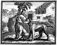 François Chauveau (1613-1676) : gravure pour les « Fables choisies mises en vers par M. de la Fontaine » Le Loup et le chien.