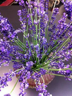 Lavender.  Sachets available for purchase at The Foliage Cart studio: http://www.artfire.com/ext/shop/studio/thefoliagecart