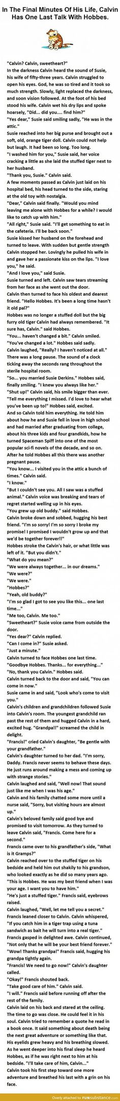 Calvin and Hobbes...It's Beautiful                                                                                                                                                                                 More
