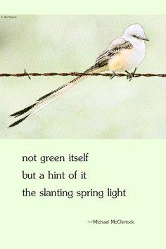Haiku poem: not green itself -- by Michael McClintock. Short poetry: Haiku and Tanka poetry boards.