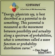 Energy, physicists say, is best described as a potential to do something. This potential is measured as the movement between possibility and actuality along a spectrum of probabilities, what is sometimes called a wave function or probability distribution curve. – Dan Siegel, Mind (2017)