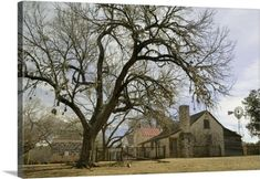 Solid-Faced Canvas Print Wall Art Print entitled Farmhouse on a landscape, Living History Farms, Lyndon B Johnson National Historical Park, Johnson City, Texas Canvas Art Prints, Canvas Wall Art, Framed Prints, Texas Canvas, Texas Wall Art, New York Canvas, Johnson City, Panoramic Images, The Masterpiece