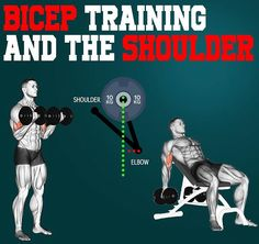 shoulders during a bicep curl ✳This question seems to arise a lot, whether it is good to move your s Huge Biceps, Biceps And Triceps, Biceps Workout, Gym Workouts For Men, Chest Workouts, Muscle Anatomy, Found Out, Workout Videos, Curls