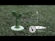 RAINSPROUT WEBE - YouTube