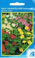Nagy csodatölcsér színkeverék Parsley, Herbs, Food, Essen, Herb, Meals, Yemek, Eten, Medicinal Plants