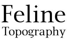 #FreshFonts P22 Mai http://www.fontshop.com/fonts/family/p22_mai/Packages/All/WeightWidth/1 von IHOF http://www.fontshop.com/fonts/foundry/ludwigtype/ #display #kontrast 14_04