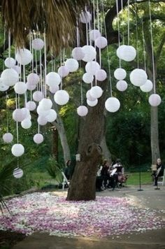 White Balloons Suspended under a Tree with White Ribbons...  http://www.hanginglanterns.co.uk/