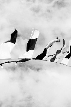 Free stock photo of black-and-white, sky, flags, boat