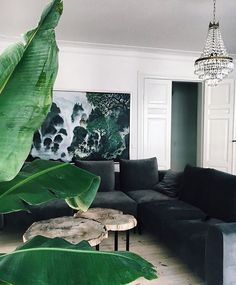 Living Room Color Schemes That Express Yourself Room Colors, Interior Design, House Interior, Living Room Color Schemes, Home, Interior, Elegant Living Room, Green Interiors, Elegant Living