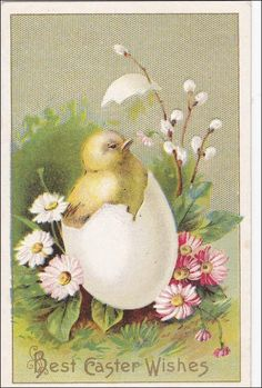 Easter  Postcard  Chick  breaking out of by sharonfostervintage, $3.75