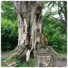 Fairy House Wood Carving - Worthington Park, Trafford
