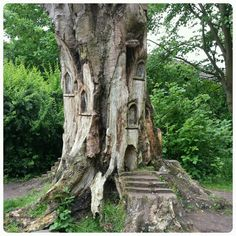 Fairy House Wood Carving - Worthington Park, Trafford