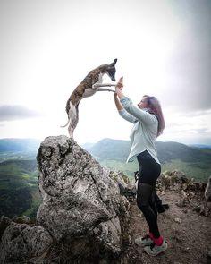 """Ako so psom? na Instagrame: """"💙 Ak by si si mala vybrať medzi mužom tvojich snov a psom tvojich snov, ktoré plemeno by to bolo? 🤫😇 ~ 📸@m.fke"""" Dog Training, Dogs, Girls, Cute, Youtube, Instagram, Toddler Girls, Daughters, Dog Training School"""