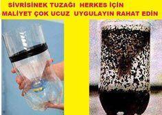 Kolay sivrisinek tuzağı nasıl yapılır?Bu yöntem ile sivrisinekler kabusunuz olmaktan çıkacak deneyin memnun kalacaksınız
