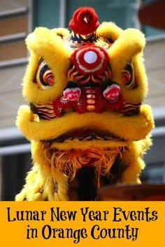 Chinese New Year Lion Dance--I want to go to China! Chinese Lion Dance, Chinese Dragon, Chinese Art, New Years Parade, Chinese New Year Parade, Chinese New Year Traditions, China, Kung Fu, Lion Dragon