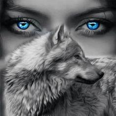 Lobo ojos azules