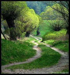polish landscape warminsko mazurskie poland pinterest country roads flower and. Black Bedroom Furniture Sets. Home Design Ideas