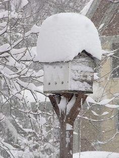 Birdhouse in snow.  By: The Natural Capital on Flickr with permission
