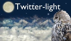 Meaning: An alternative to twilight.  Origin: Early 1600s  As in: London is at its most beautiful by twitter-light.