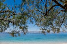 Hotel Lemongarden, Brač: high spirits - LIFESTYLEHOTELS Croatian Islands, Destin Hotels, Paradise Garden, Southern Europe, Beach Bars, Old Stone, Fishing Villages, Private Jet, Hotel S