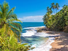 It's the largest city on Costa Rica's Caribbean coast and yet its business has been more with fruit cargo than cruise ships. That may soon change as cruise lines discover it's an easy access point for two national parks—Tortuguero and Cahuita—as well as the Veragua Rainforest, a Dole banana plantation, and a sloth sanctuary. Puerto Limon offers a literal boatload of travelers a quick taste of Costa Rican eco-tourism and cruise lines like Holland America, Celebrity, Princess, and Norwegian…