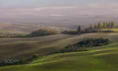 my beloved Tuscany - null
