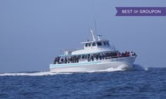 From the merchant: Welcome aboard Sea Goddess, the premier whale watching vessel in the whale watching Capital of the World - Monterey.