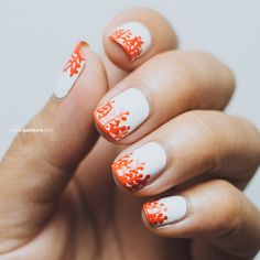 Using my nail brushes and dotting tool, I recreated a design that I saw from an Anthropologie bowl. It was fairly simple and really cute. The orange really pops from the white base as well.        Products used: Formula X White Matter, Zoya Rocha, Seche Vite Top Coat