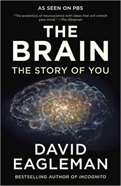 AmazonSmile: The Brain: The Story of You (9780525433446): David Eagleman: Books