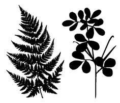 plant silhouettes   Crafty   Pinterest   DIY home, Silhouette and ...
