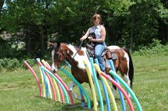 HorseNation-Pool-Noodle-Garden-courtesy-of-Trail-Horse-Challenge-Canada.jpg 360×240 pixels