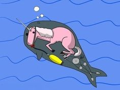 The Truth Behind Narwhals!!!!!!!!!!!!!!!!!
