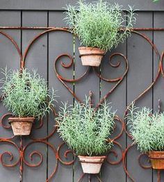 Choosing A Fence For Your Home #potted #herbs