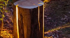 Das Holz an sich ist ein Naturmaterial, das zahlreichen Facetten hat und auch so viele Verarbeitungs...