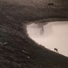 Kåre Kivijärvi-min verden er en annen #kivijärvi #blomqvist #oslo #norway