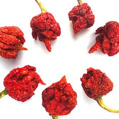 Bag of Dried Scorpion Peppers