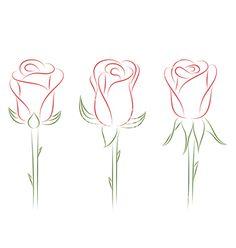 Set of roses vector on VectorStock&reg