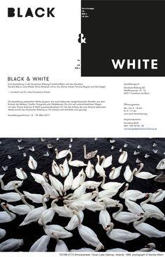 Black & White wird bis zum 07.04.2017 verlängert. The Exhibition has been extended to April 7th 2017.  BLACK & WHITE Shiva Aliabadi, Thomas Bayrle, Rainer Dissel, Ichiro Irie, Sandra Mann, Diet Sayler und Lena Wolek  Ausstellung 16.03.-07.04.2017, Deutsche Bildung AG, Weißfrauenstrasse 12 - 16, in 60311 Frankfurt am Main  #exhibition #artists #DeutscheBildungAG #art