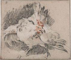 François Boucher (French, 1703-1770), Study of a Hen, ca. 1727/28, black, red and white chalk on light brown paper. Nationalmuseum, Stockholm. Photo: Cecilia Heisser / Nationalmuseum