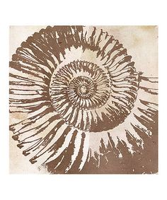 Another great find on #zulily! Spiral Shell Canvas by Green Leaf Art #zulilyfinds