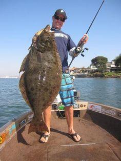 Fluke fishing how to tie killer fluke summer flounder for Flounder rigs surf fishing