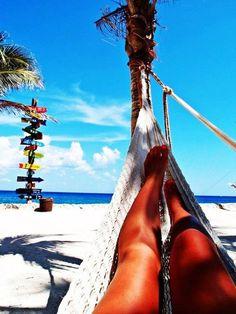 hammocks >