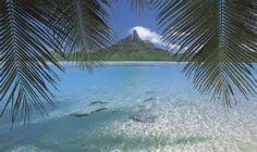 Tahiti et ses iles bora bora