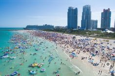 Miami Natives, This Is Why We Need To Keep Our Beaches Clean